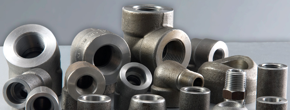 Stainless Steel 304 / 316 Forged Threaded Fittings in India